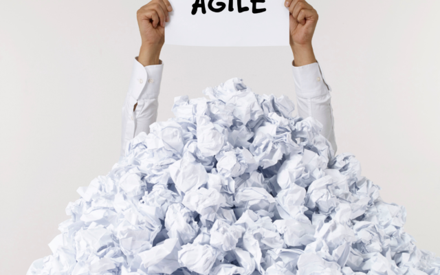 The Agile Executive — Marriage Made in Heaven Or Just Staying For The Kids?